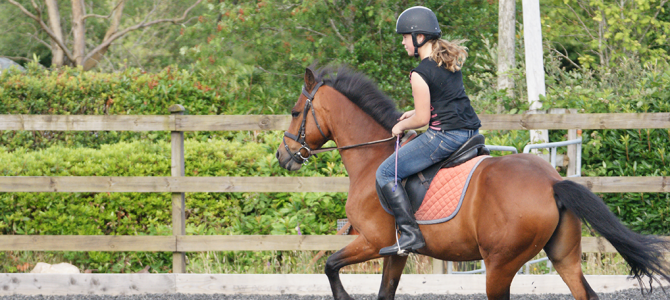 We provide equestrian rubber